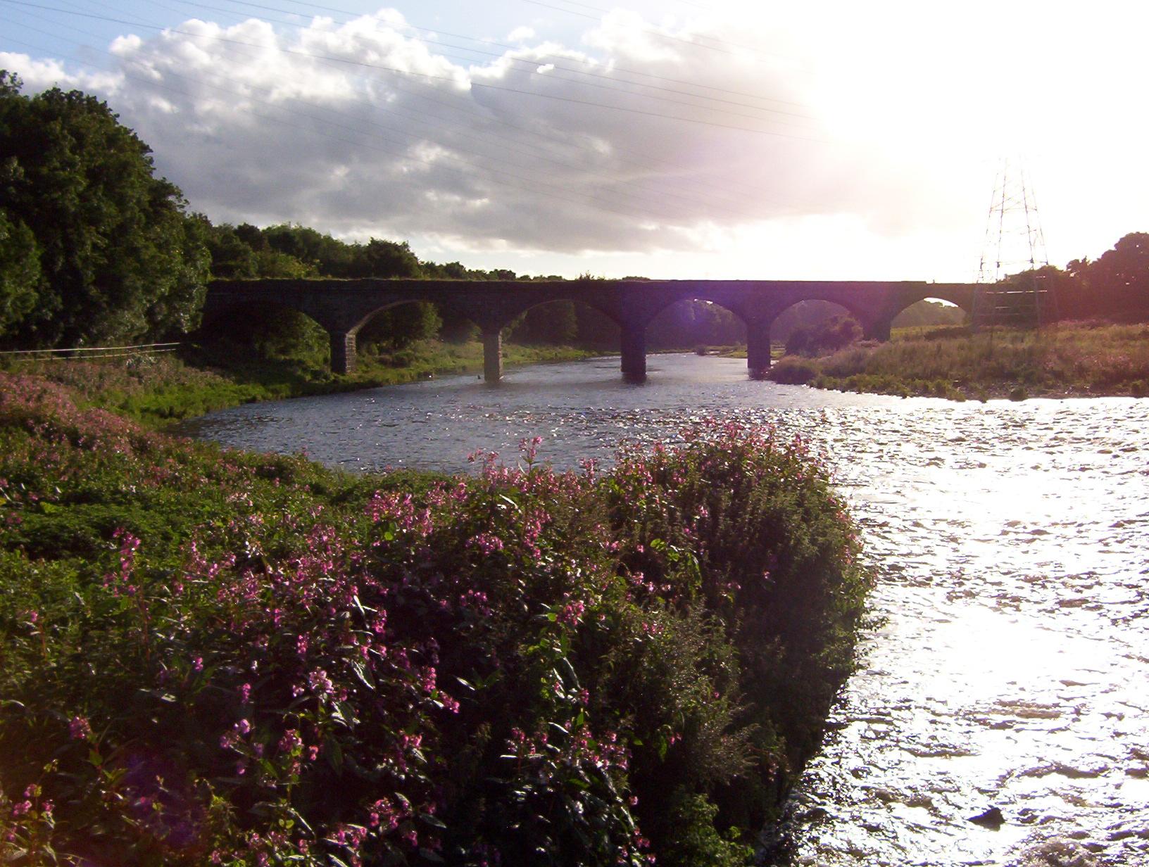 waverley-viaduct